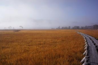 秋は尾瀬の草紅葉ツアー。