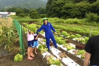 20種類以上の野菜収穫体験