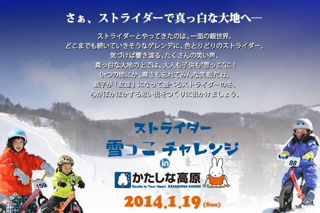 pr_snow